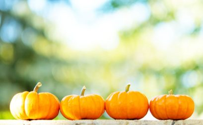 Pumpkin skincare - benefits of including pumpkin in your beauty routine