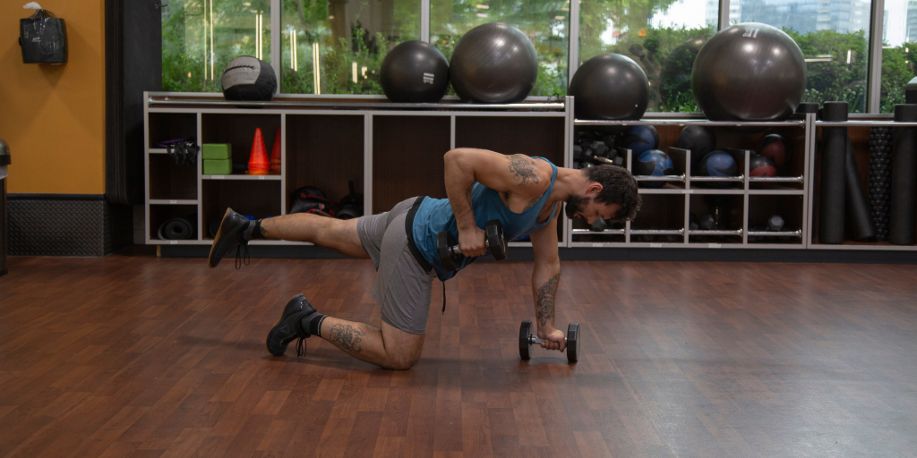 Dumbbell Stability Row